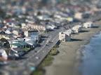Lyall Bay miniature