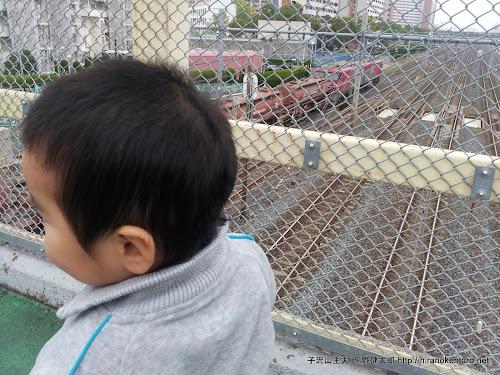 蕨駅近くを通る貨物列車を見に