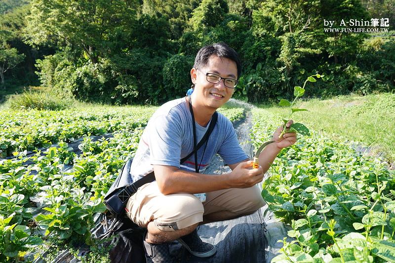 碧蘿村有機休閒農場4