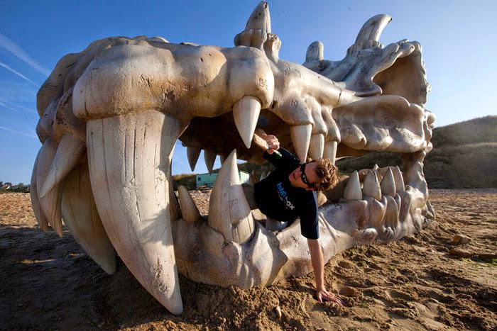 *侏儸紀:化石上岸! 2