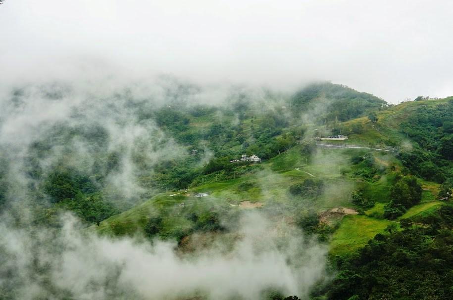 台東景點推薦【太麻里金針山】夏季限定太麻里金針花季
