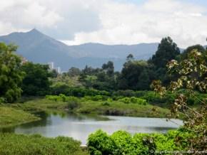 Humedal Córdoba (Itzatá)