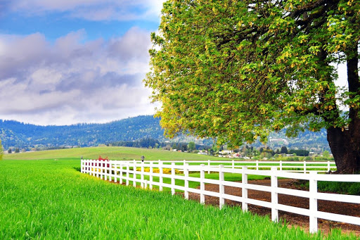 Farm view by Corvallis-Albany Hwy 20 in Oregon, USA