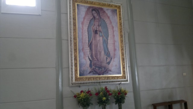 virgen, guadalupe