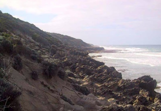 Limestone rocks - Deepdene Beach - Cape to Cape Track