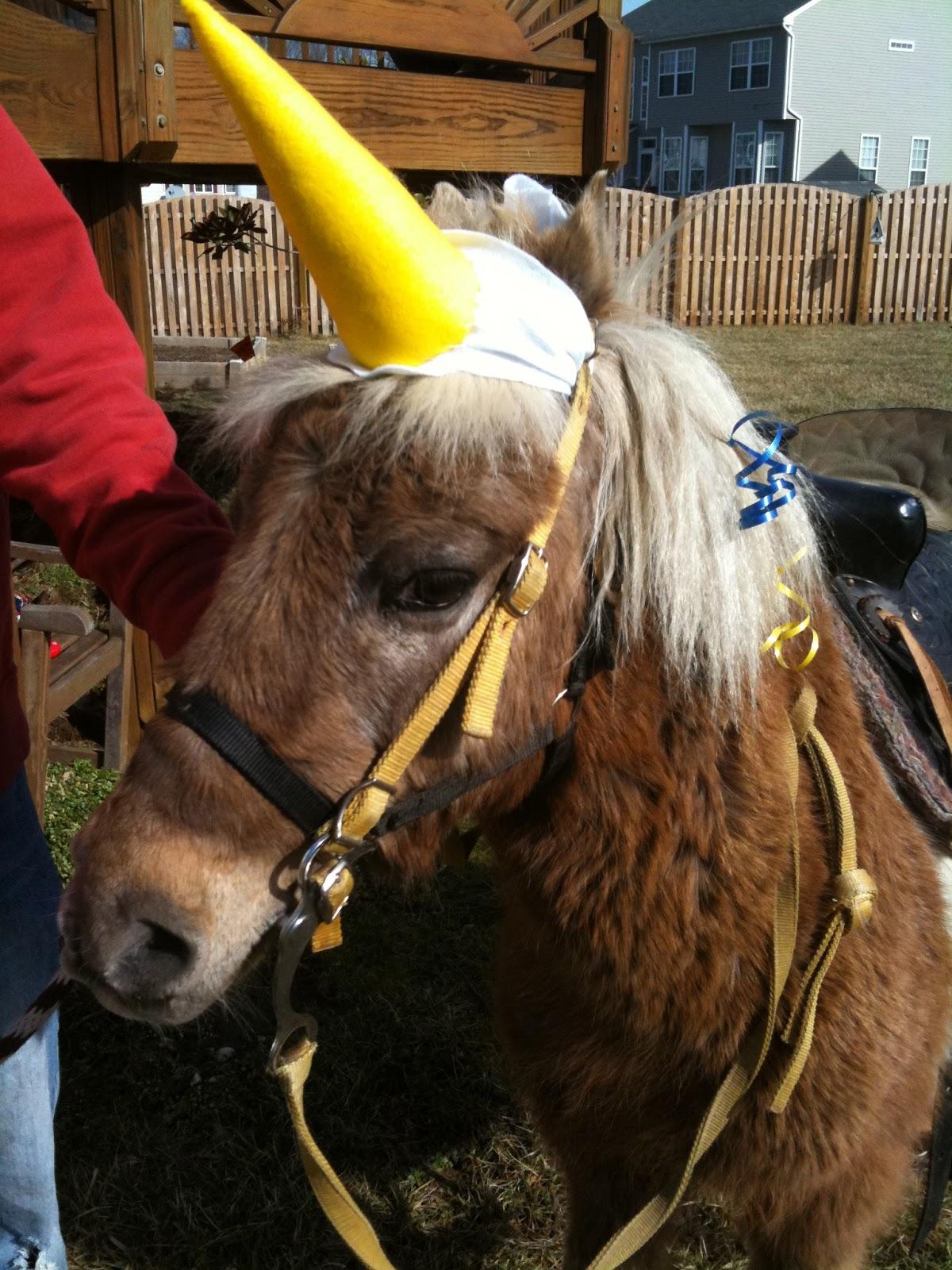 Happy Birdycake Unicorn Birthday Party