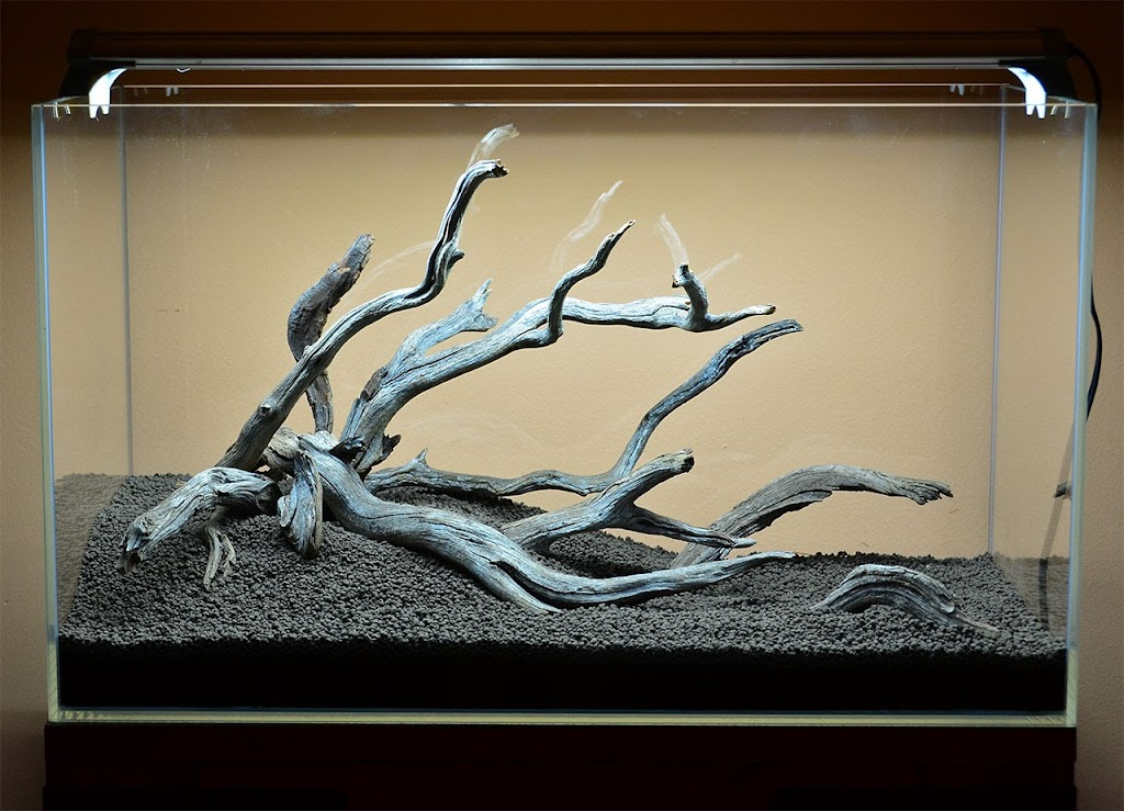 Wood And Rocks Before Substrate The Planted Tank Forum