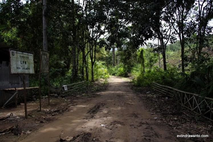 jalan menuju desa loklahung
