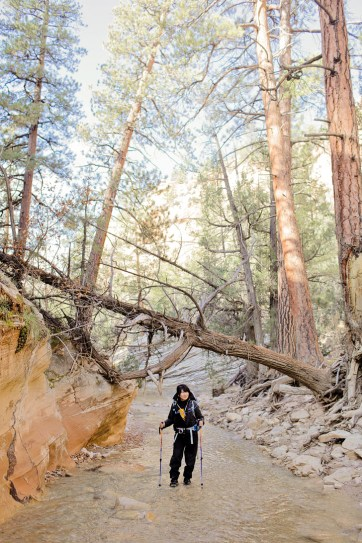 Hiking Tips for the Narrows Zion Hike.