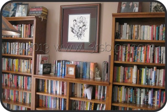 bookshelves overview