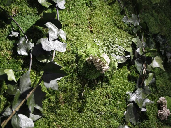 jardín vertical planta conservada liofilizada pikolinos alicante