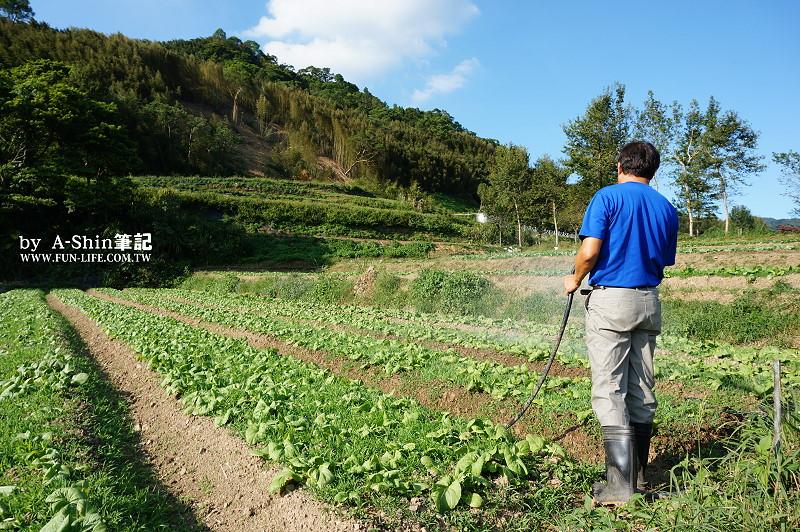 碧蘿村有機休閒農場3