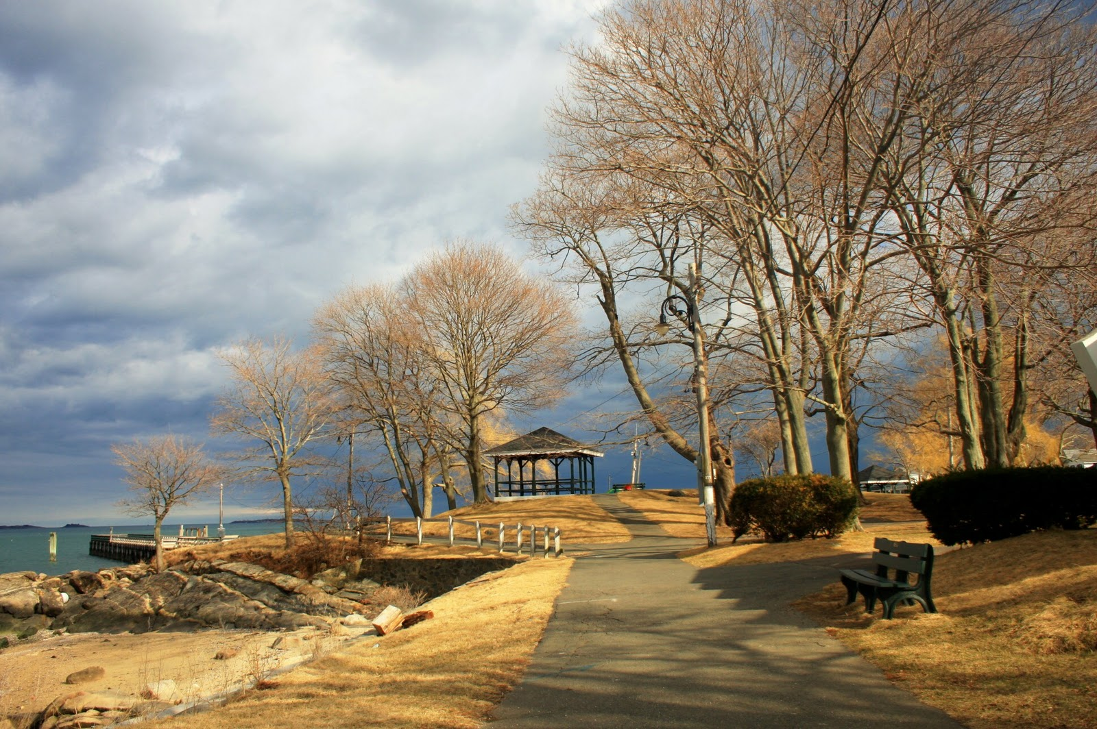 My New England Salem Willows