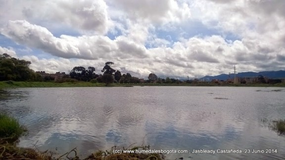 Humedal La Libélula