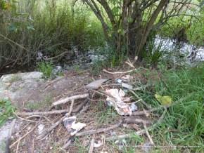 Residuos sólidos en el caudal ecológico