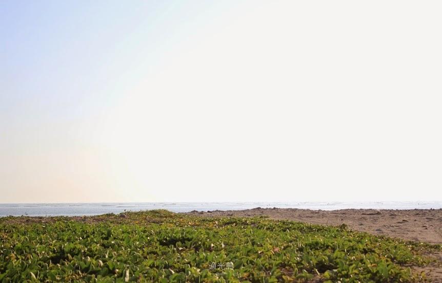 台南安平景點,漁光島-3