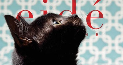Catsparella Eid Magazine Presents The Cat Issue