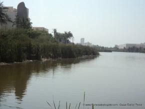 Humedal Laguna de Camarón 2