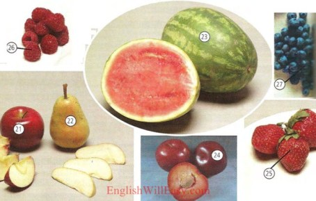 Fruit-Food-dictionnaire d'image