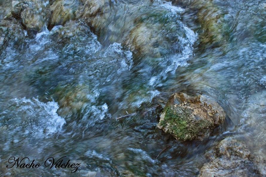 Embalse y río Colomera 06.04.14 (5/6)