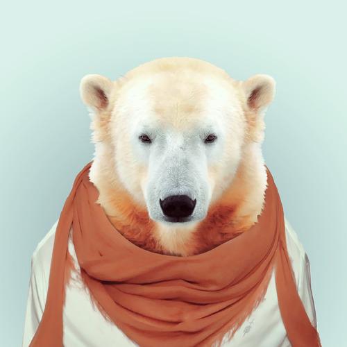 *Zoo Portraits動物時尚秀:正經八百時裝篇! 13