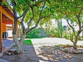 Backyard of homes for sale in Scottsdale AZ