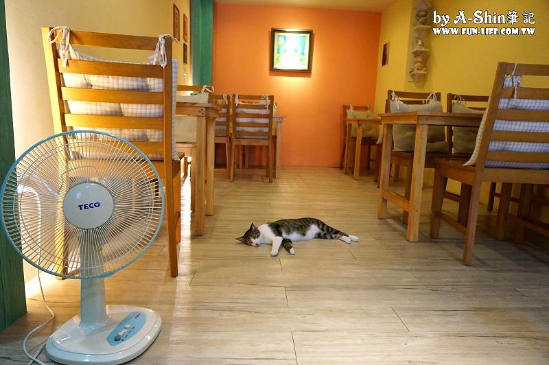這裡有貓輕食屋3