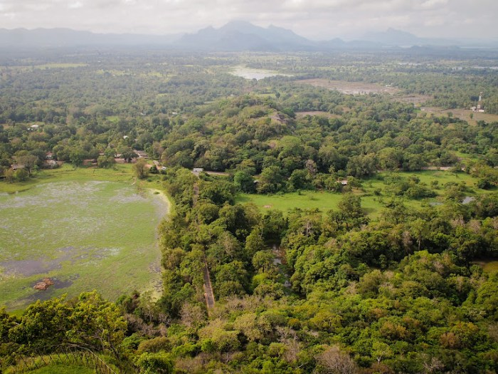 View from top of Sigiriya rock