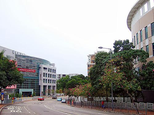 L J 的光影紀錄: 九龍塘站-達之路北
