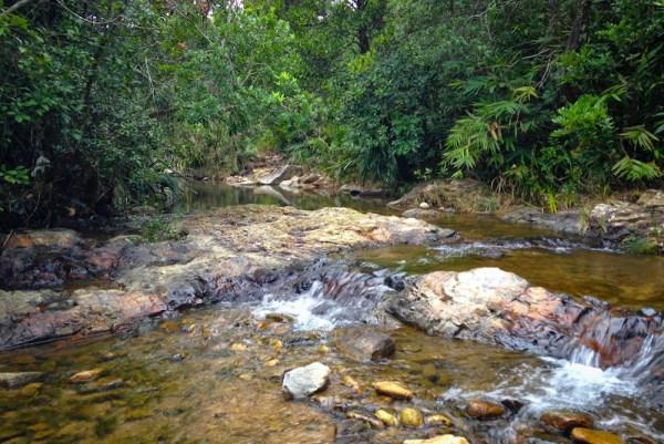 Tai Tam Mound Stream
