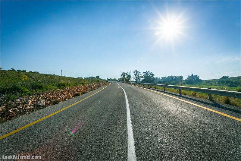 Дорога к солнечным выходным