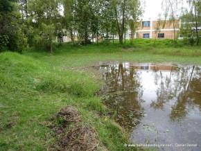 Humedal Mamá Dominga 14 de Marzo de 2012