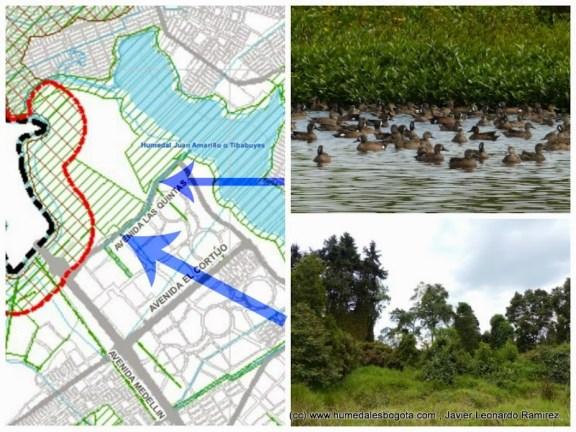 Humedal y Bosque Cortijo incorporados al suelo de protección en ME-POT (Sombreado en verde)
