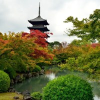 Japanin korkein pagoda