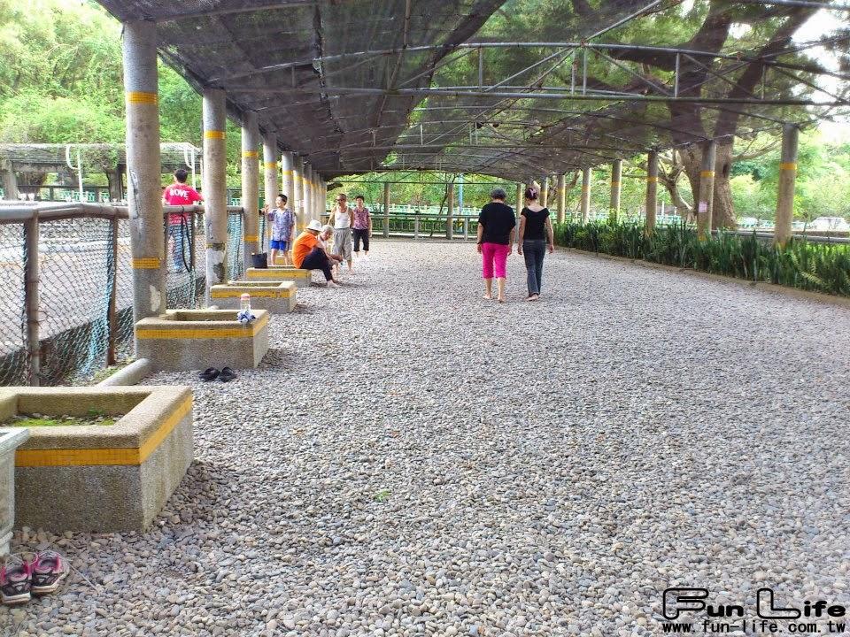 豐原中正公園-5
