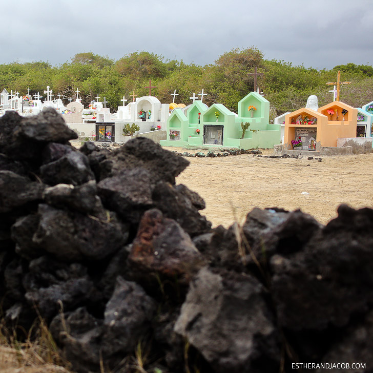 Graveyard in the Wetlands Isabela Island Galapagos .
