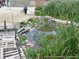 Residuos sólidos en el humedal Tierra Blanca