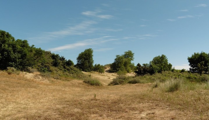 natuurgebied de Hoge Blekker in Koksijde