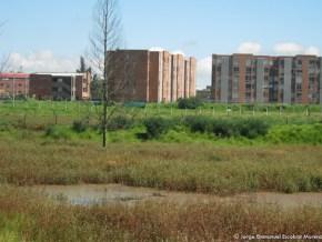 Lugar por donde pasará la Av Alo, Humedal Capellanía