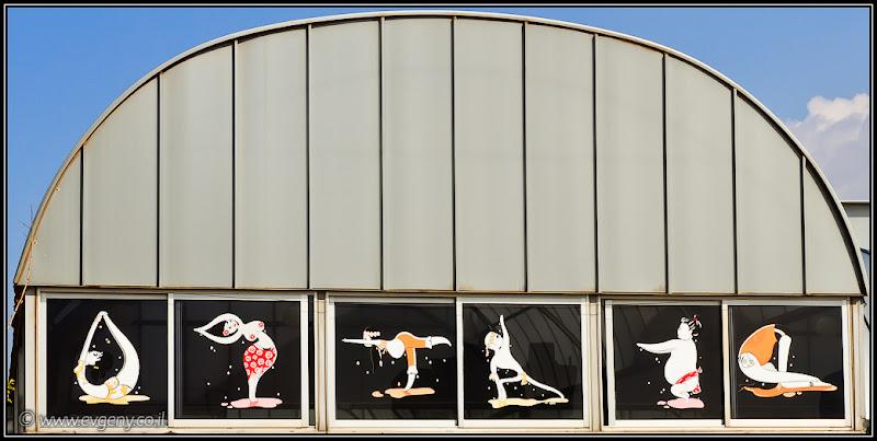 Одно фото / Израиль, Тель Авив / Агит-спорт