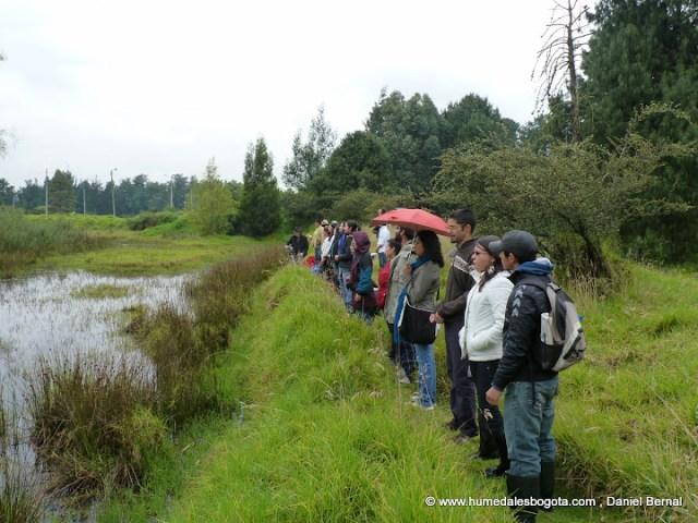 Canto al agua 2012 Humedal El Salitre