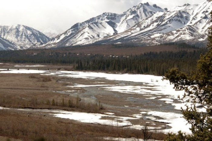 Beautiful Alaska, Denali National Park