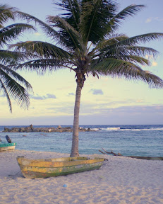 Windy side of Cozumel