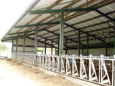 Designing Cattle Sheds Cross Plan