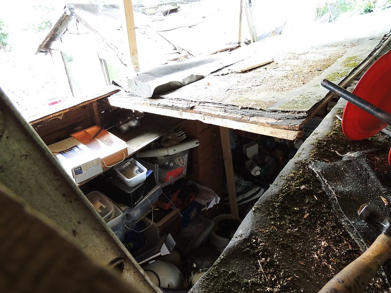 Making Weird Stuff Shed Roof Extension Part 5 Cutting