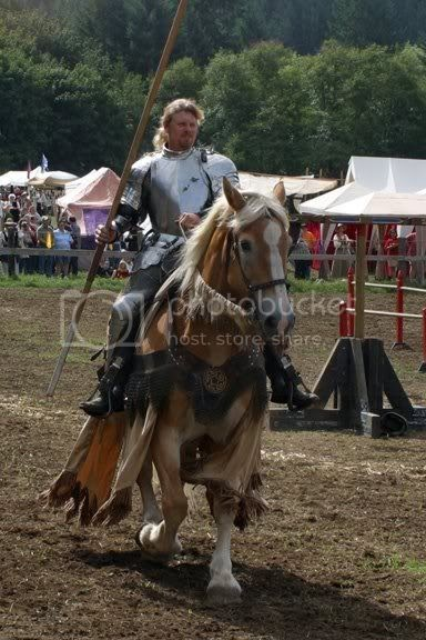 The Jousting Life In Remembrance Of Duke A Great