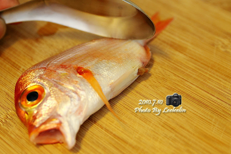 [熊本食堂] 赤鯮料理(黃牙鯛)|魚鮮煮湯就很美味|熊爸料理廚房 | 熊本一家の愛旅遊瘋攝影