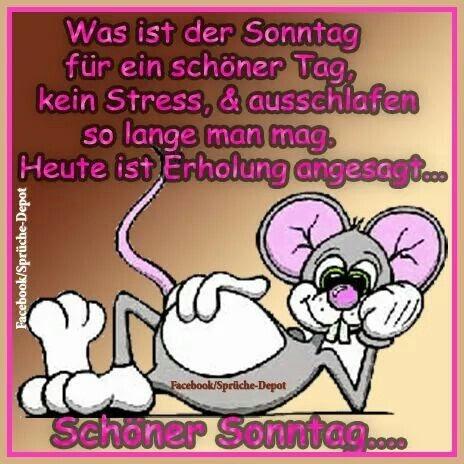 Spruch Schonen Sonntag Bilder Und Spruche Fur Whatsapp Und