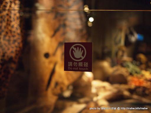 "Traveling The Silk Road @ 台北""臺灣科學教育館""特展 ""穿越時空? 絲路行!"" 下午茶 區域 博物館 台北市 咖啡簡餐 嗜好 圖書 士林區 宗教 廣告 新聞與政治 旅行 星座 景點 會展 歷史 自然科學 茶類 輕食 飲食/食記/吃吃喝喝"