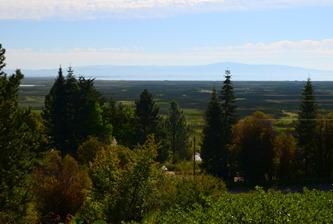 overlooking Upper Klamath NWR from Westside Road